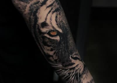 IMG_1961 Robin Labreche FYT Cartridges Tiger Tattoo Black and Grey